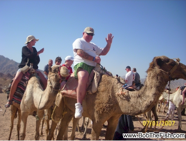 Holy cow! Is that really Ian from the UK in his Bob The Fish T-shirt on a camel in Egypt? SURE IS!